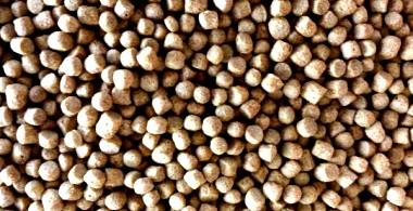 KoiAqua Premium Vitalis Health - High Quality Koifutter für vitale Koi